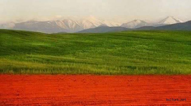 Bulgaristan Cumhurbaşkanı Radev Çin'i Ziyaret Etti