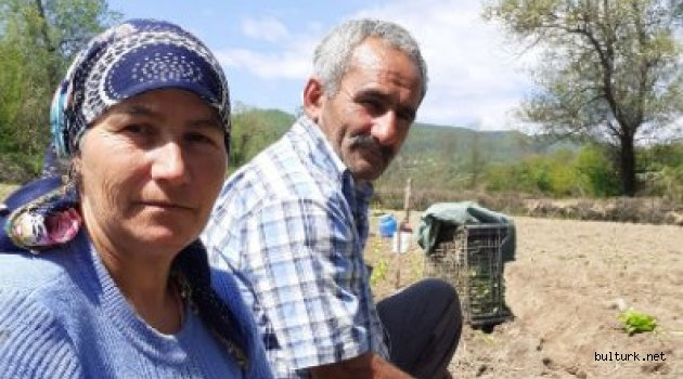 Hatice Rasim ile Samodiva tütün tarlalarında sohbet