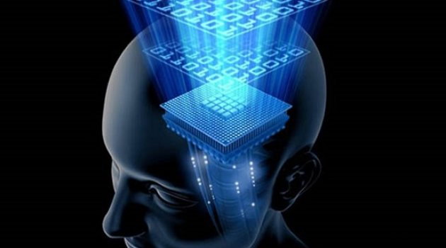 İnsan Beynine Bilgi Aktarılacak
