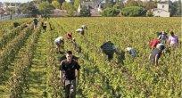 AK sözcüsü Bulgaristan'ın mevsimlik işçileri durdurmamasını istedi